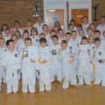 Taekwon-Do Class - Young Children