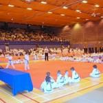Taekwon-Do Competition