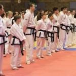 Taekwon-Do Grading